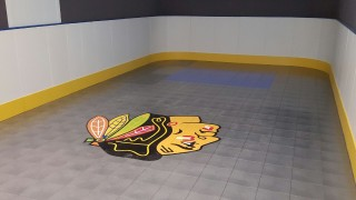 Basement Hockey Room